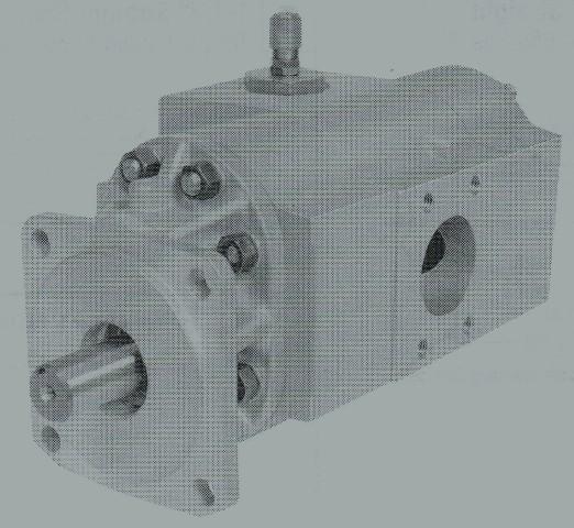NST20 Series Tandem Pump